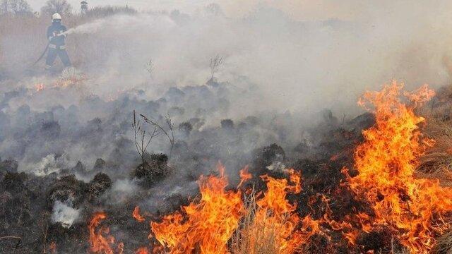 وقوع 40 حریق در مراتع و عرصه های محیط زیستی استان